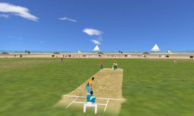 Beach Cricket Game